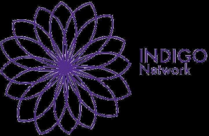 The INDIGO Network